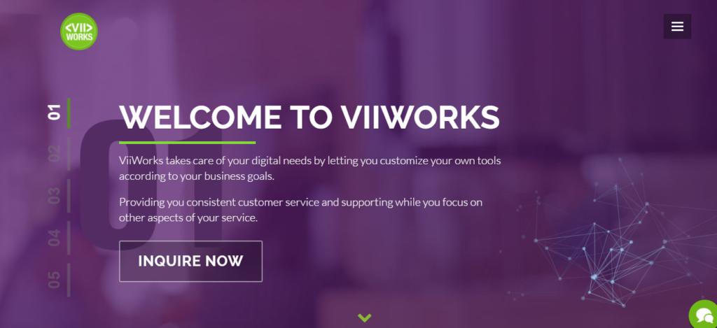 Viiworks Overview